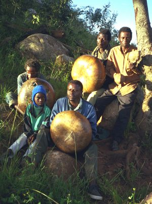 Dambatsoko Mbira Group 1999