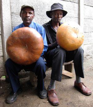 Tigere & Tawedzera Play Kushaura and Kutsinhira Mbira Parts
