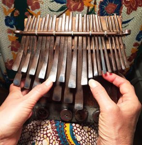 What you see during a Skype mbira lesson