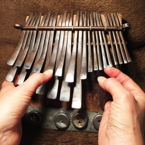 What you see in video mbira lessons